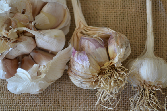 Why You Should Only Be Eating Australian-Grown Garlic