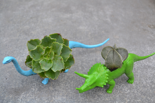 DIY: Dinosaur Planter