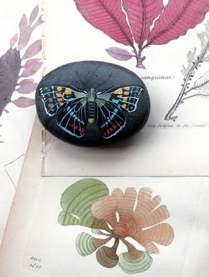 Geninne's Painted Rocks • Checks and Spots