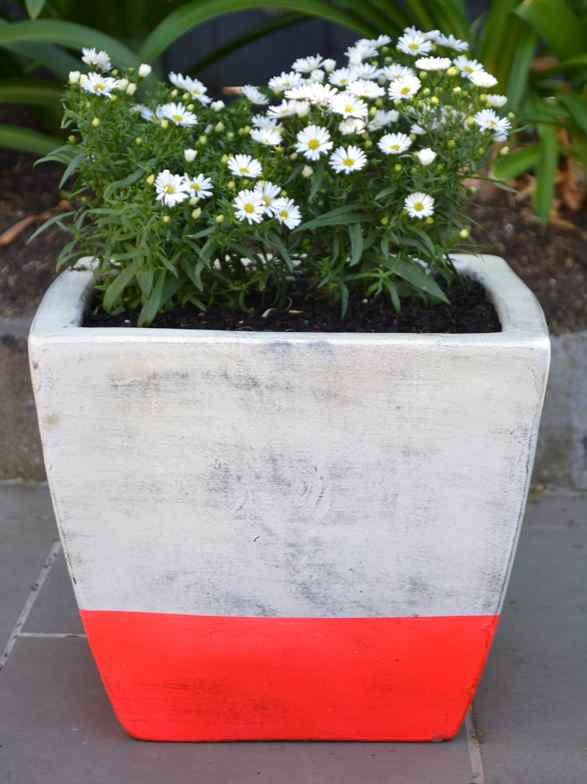 Make Your Own Neon Stripe Flower Pot Checks And Spots