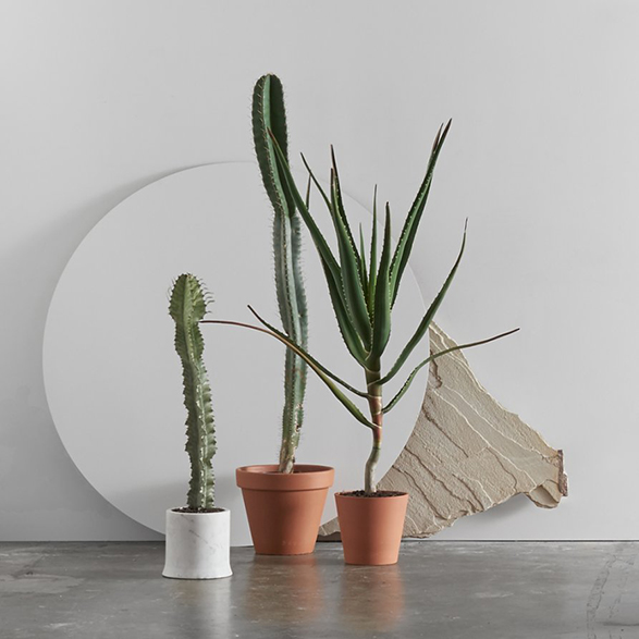 lightly-homewares